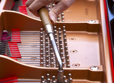 Piano technician works his tuning hammer inside a grand piano.